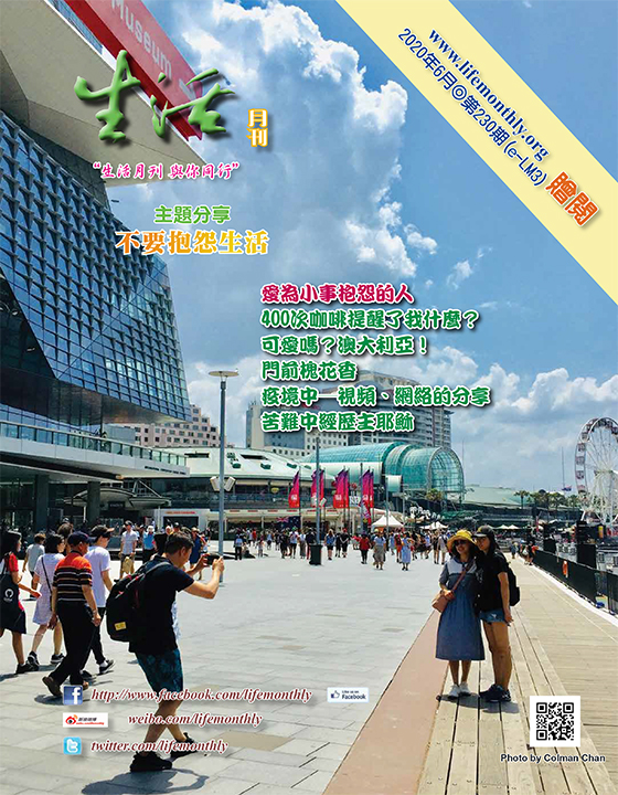 cover230