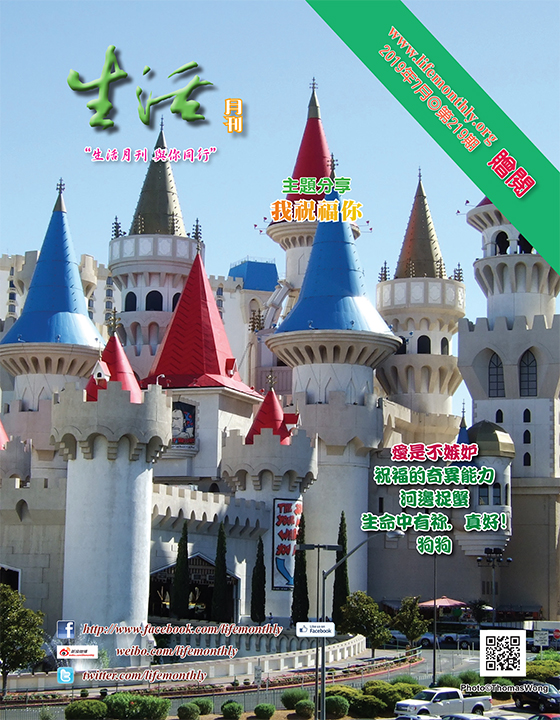 cover219